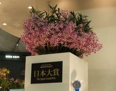 今年の日本大賞