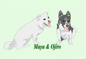Maya & Ojiro.jpg