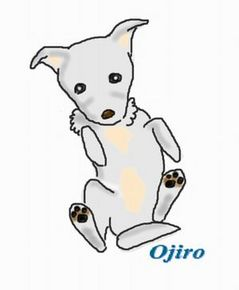 dear Ojiro.jpg